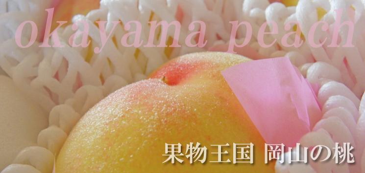 岡山県赤磐市の桃