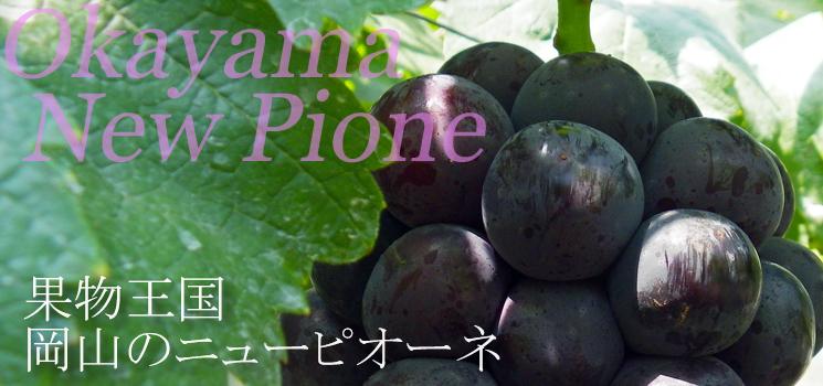 果物王国岡山のニューピオーネ