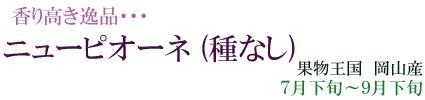 岡山の「ニューピオーネ」