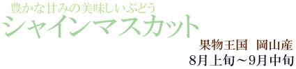 岡山の「シャインンマスカット」
